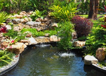 Aquapro nice pond
