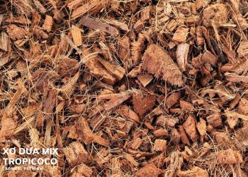 Tropicoco coir, vietanm coir manufacturer